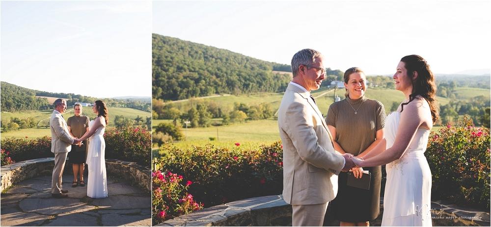 hillsborough_vineyard_virginia_wedding_0017.jpg