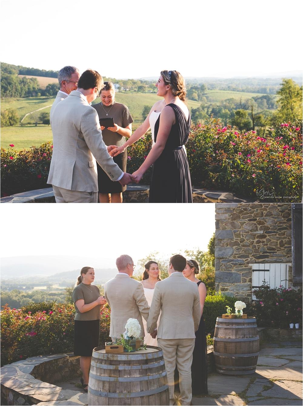 hillsborough_vineyard_virginia_wedding_0020.jpg
