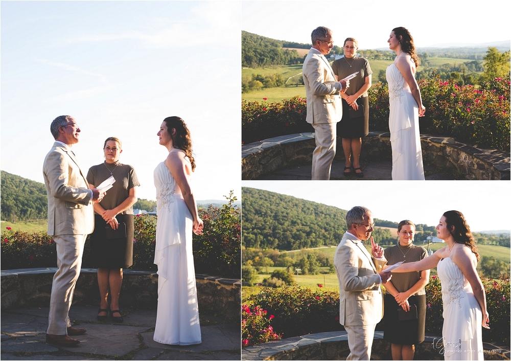 hillsborough_vineyard_virginia_wedding_0022.jpg