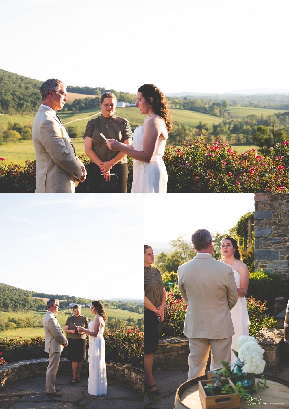 hillsborough_vineyard_virginia_wedding_0024.jpg