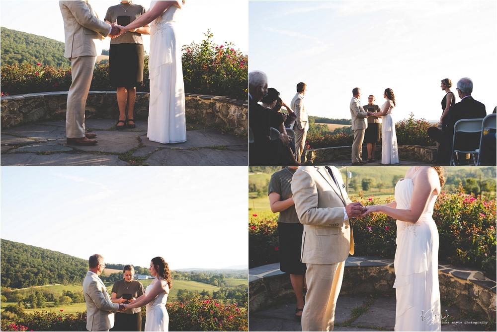 hillsborough_vineyard_virginia_wedding_0025.jpg