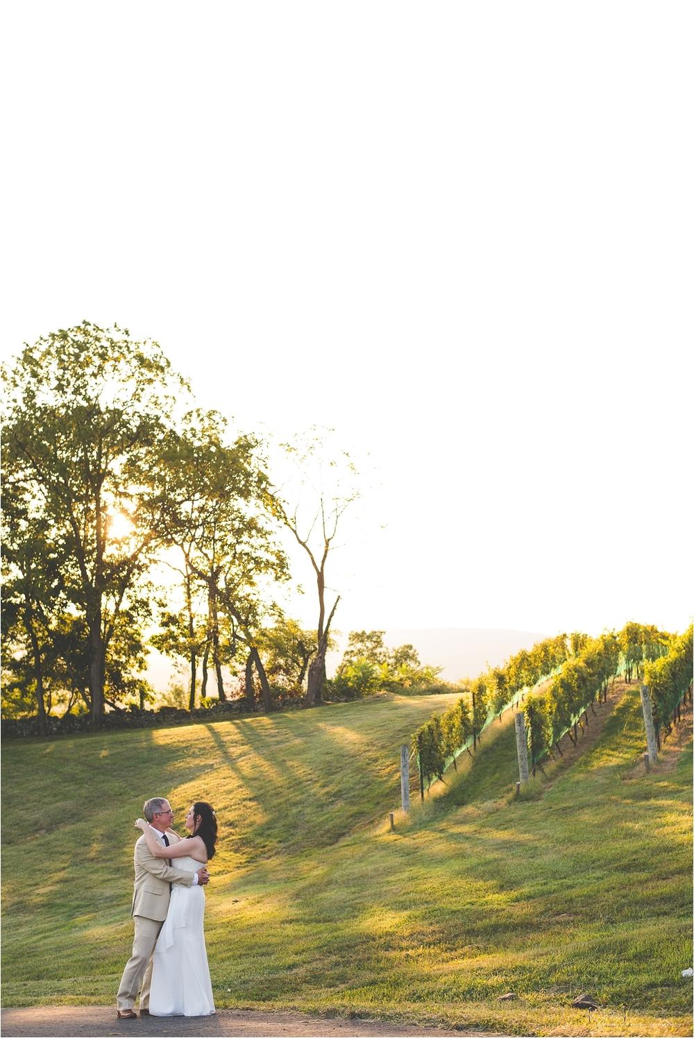 hillsborough_vineyard_virginia_wedding_0041.jpg