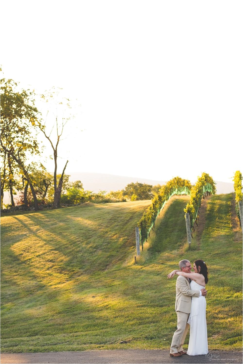 hillsborough_vineyard_virginia_wedding_0042.jpg