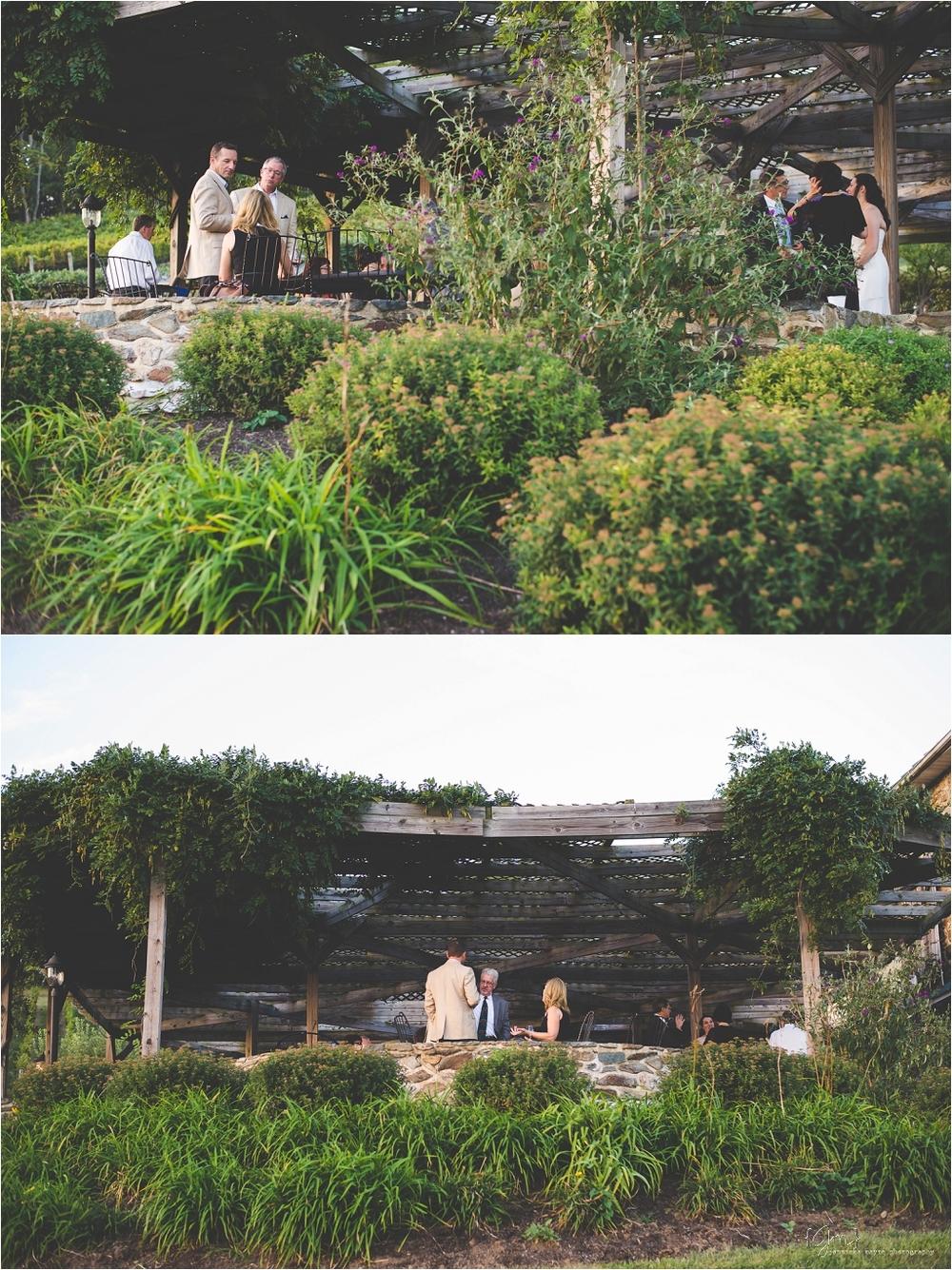hillsborough_vineyard_virginia_wedding_0055.jpg