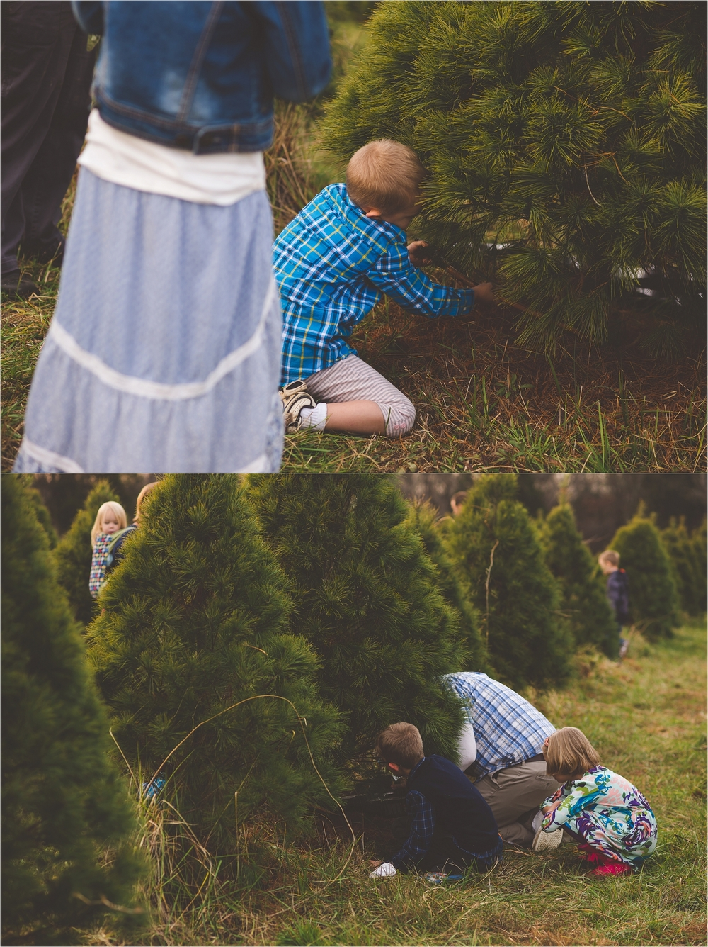 christmas-tree-farm-session-pnw-jannicka-mayte_0040.jpg