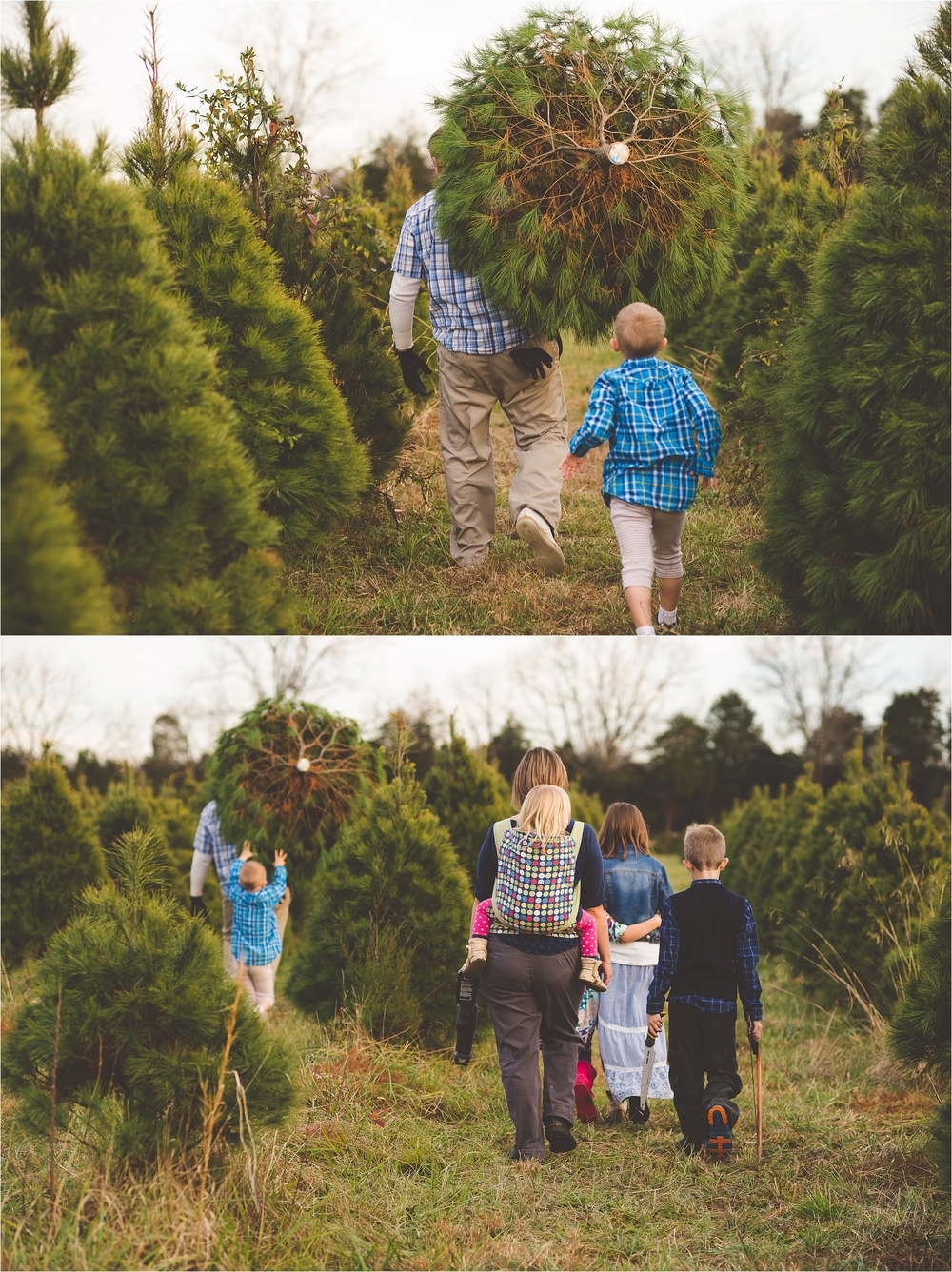 christmas-tree-farm-session-pnw-jannicka-mayte_0042.jpg