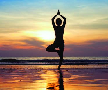 Die Weisheit des Körpers 26-28 August