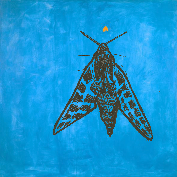 "Credit: Cat Dossett over Betty Parsons'  ""The Moth"" (1969)"