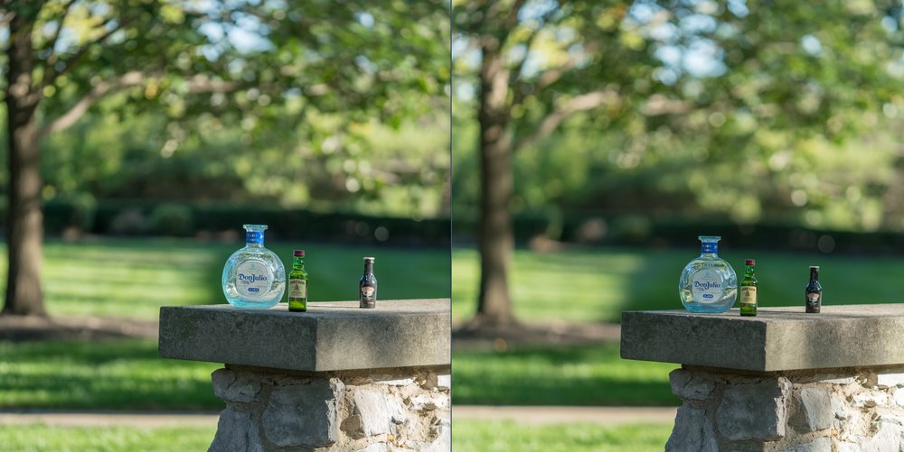 Left: Sony 90mm @ f/2.8 ---Right: Carl Zeiss 85mm @ f/1.8