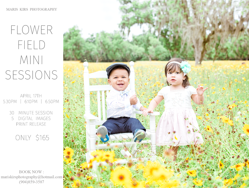 Flower field photos | Maris Kirs photography | Jacksonville, FL, St.Augustine and Ponte Vedra family photographer