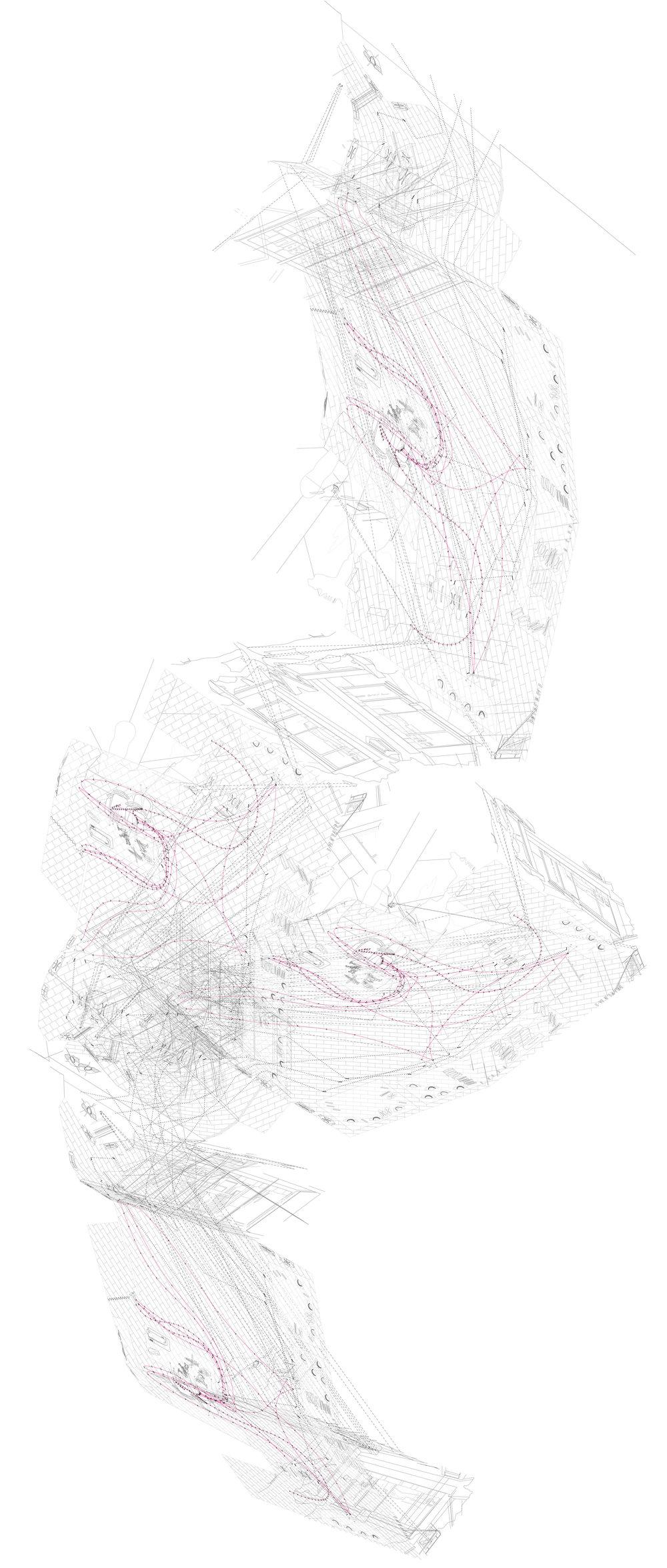 BirdwiththeCrystalPlumage+PasVu.jpg
