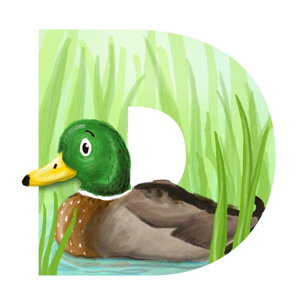 D-for-Duck.jpg