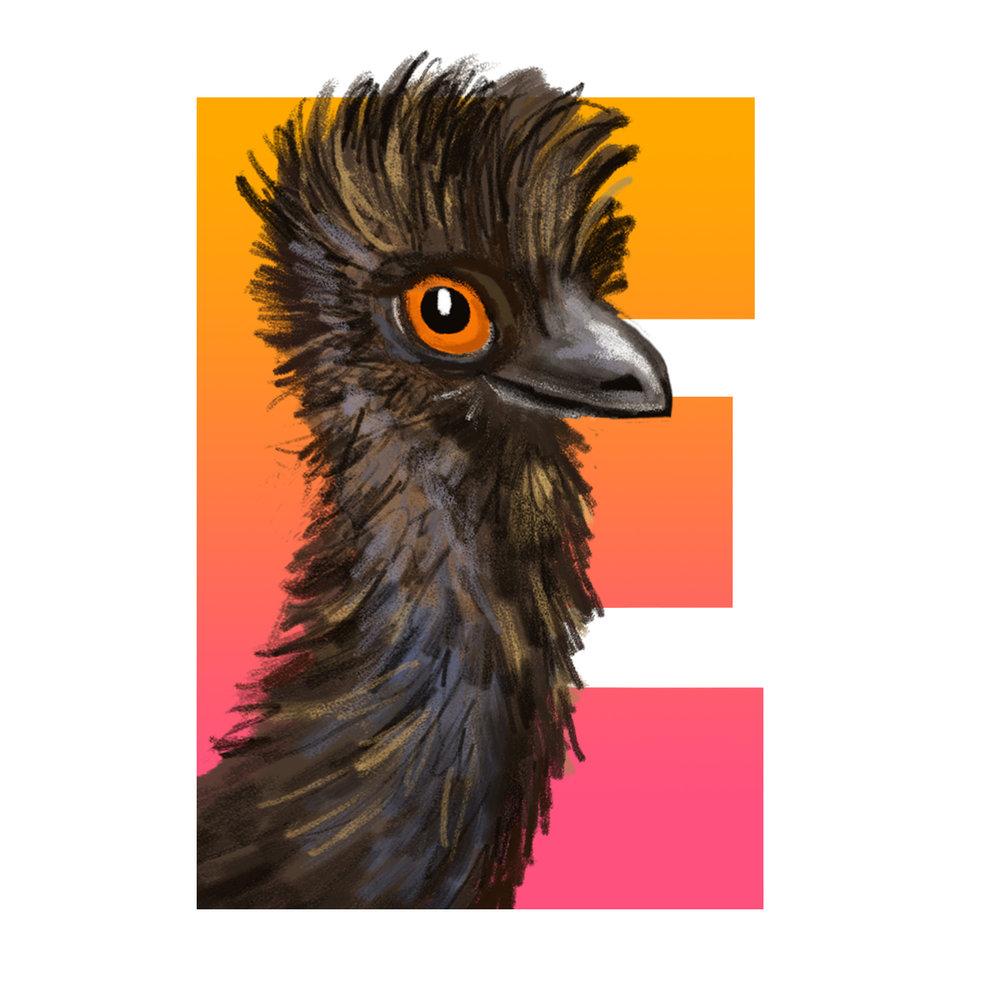 E-for-Emu.jpg
