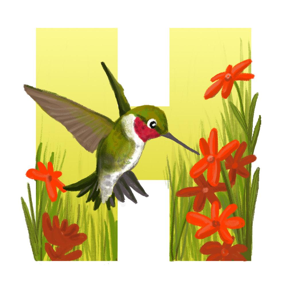 H-for-Hummingbird.jpg