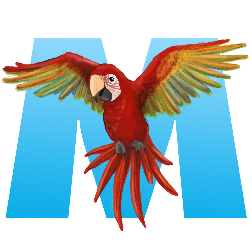 M-for-Macaw.jpg
