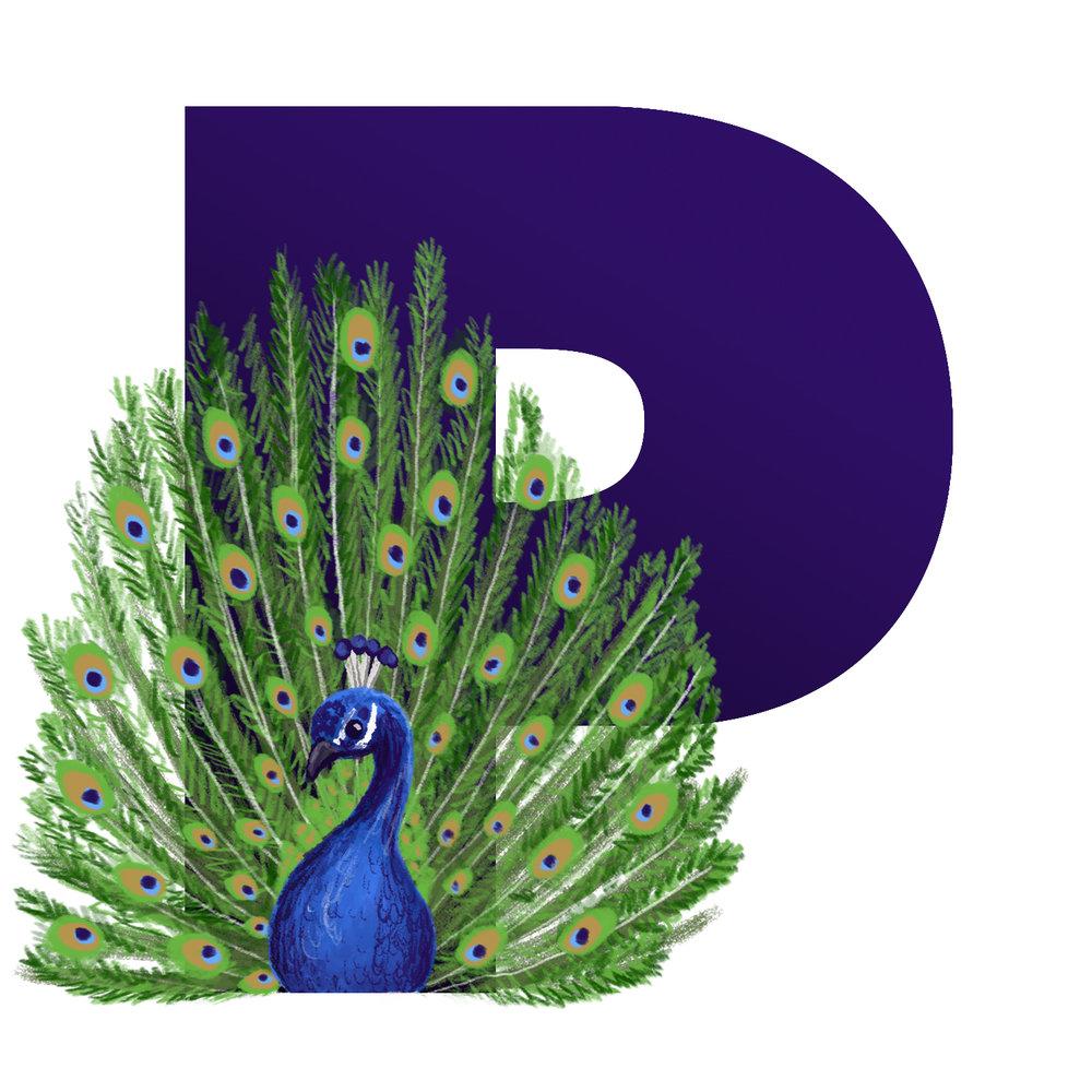 P-for-Peacock.jpg