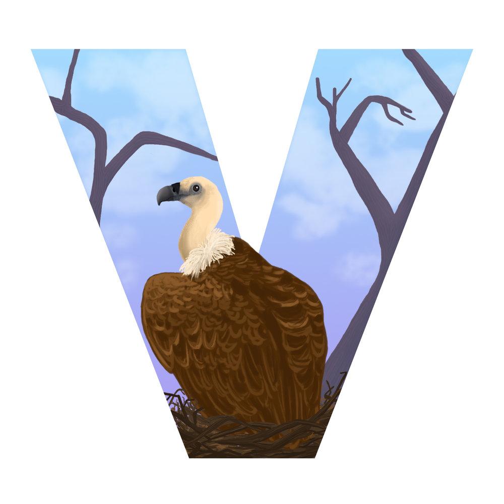 V-for-vulture.jpg