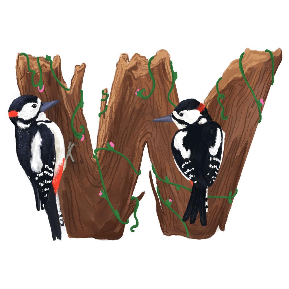 W-for-Woodpecker.jpg