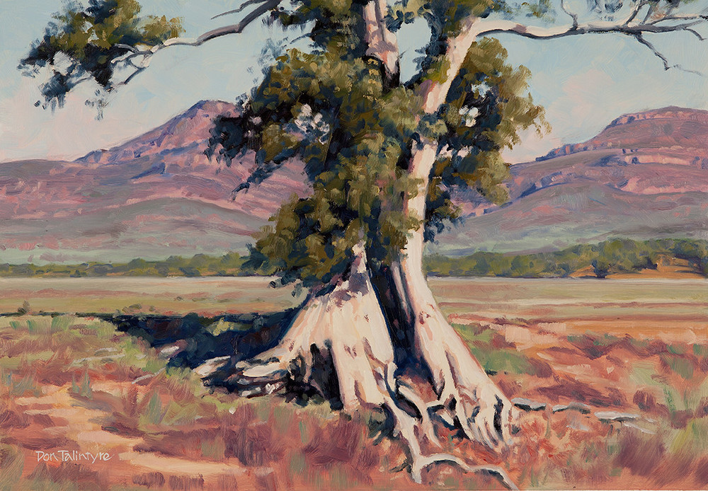Wilpena Bluffs II, Flinder's