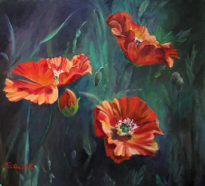Red Silk Poppies