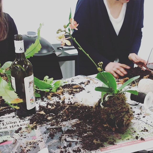 Kokedama Workshop! #kokedama #workshop #plants #earth #dewdrinkeatwork #granache #tarot #ab&d #alphaboxanddice