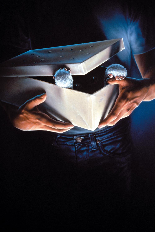 Gremlins (1984) - Joe Dante