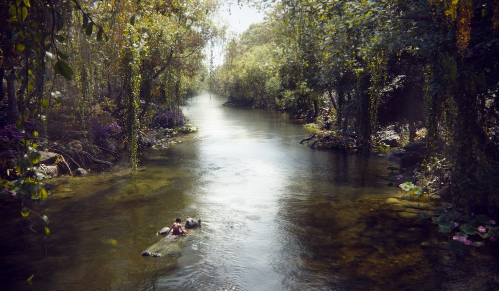 fotos el libro de la selva 3.jpg