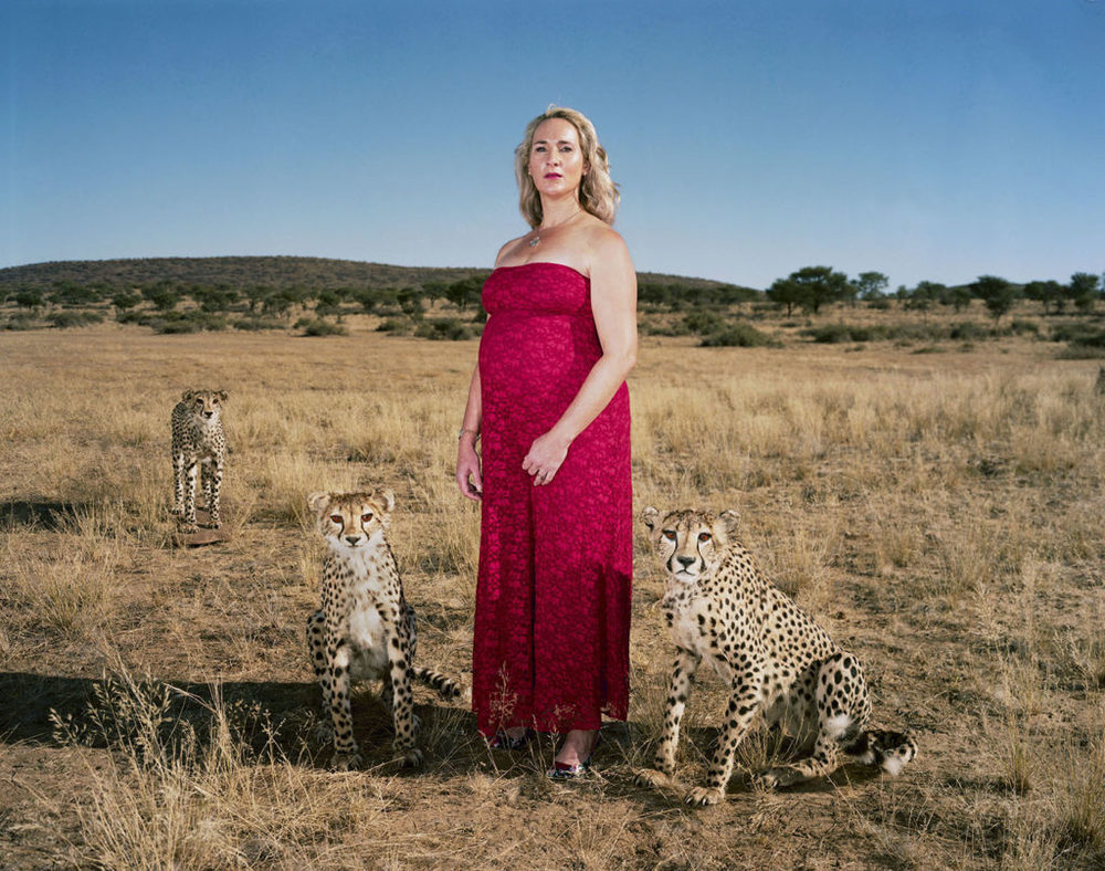 02_June_2015_Namibia_Danene_cheetahs-1024x807.jpg