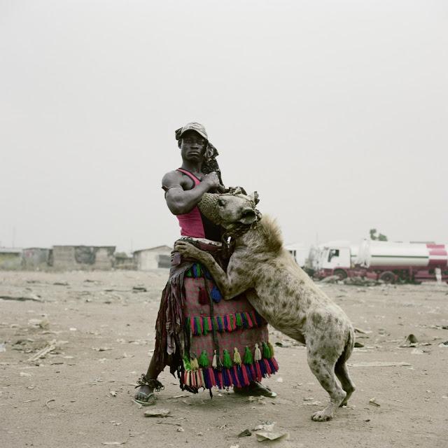 Hyena 2.jpg