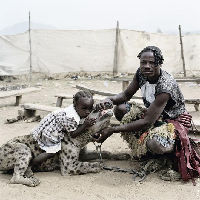 Hyena 4.jpeg