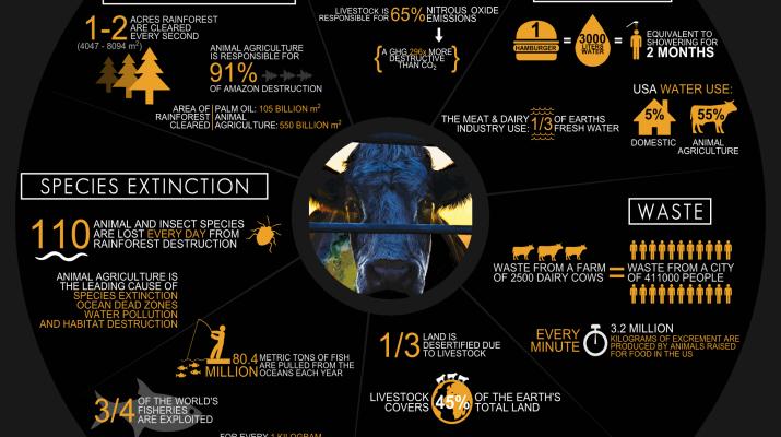Cowspiracy (2014) - Dirigido por Kip Andersen y Keegan KuhnIMDB: 8.4Rotten Tomatoes: 89%