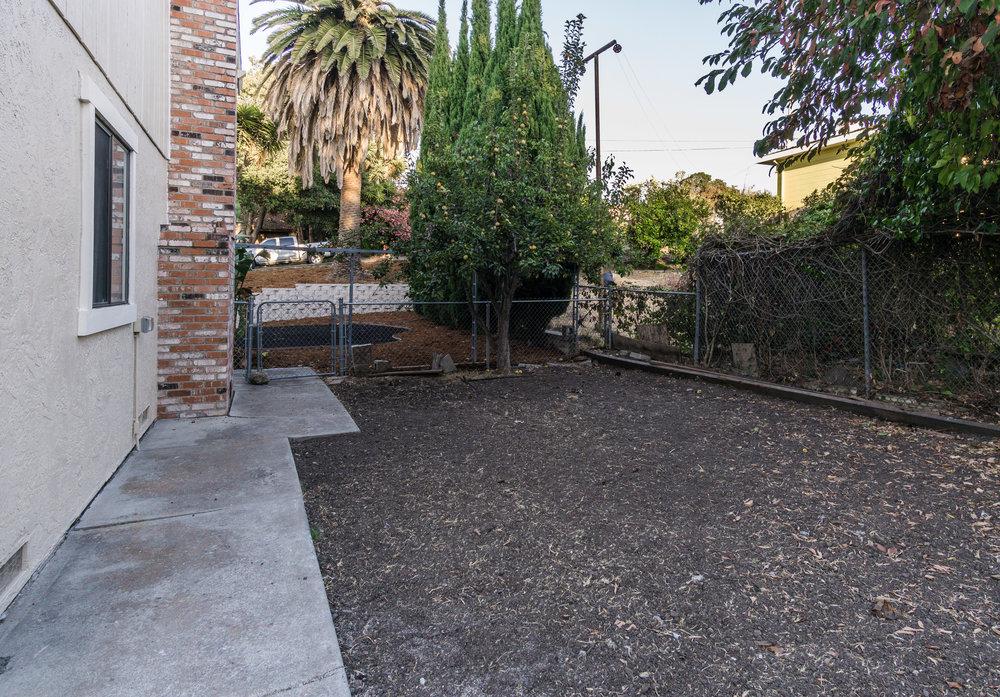 Sideyard  (1 of 1).jpg