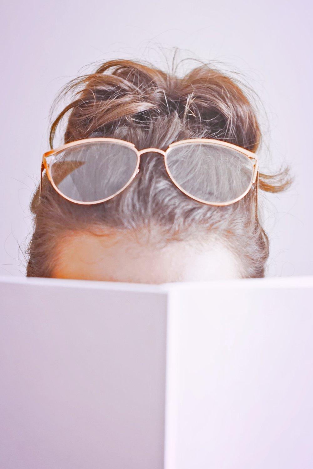 posts I've enjoyed reading lately | www.theprettypeony.com