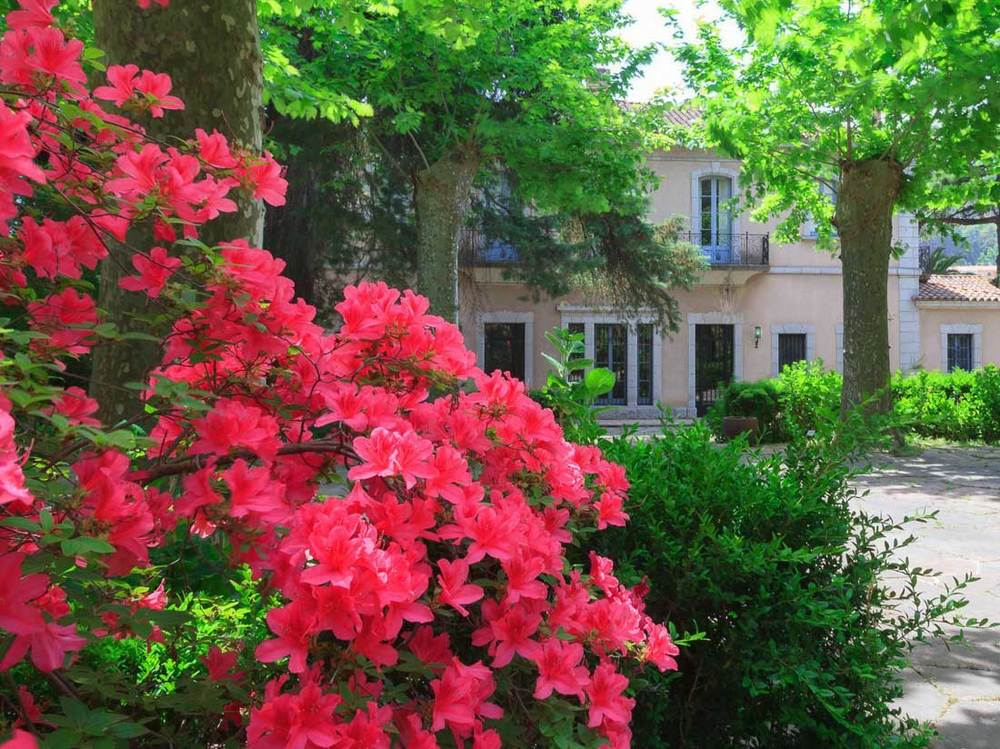 Exterior 3 - Jardins el Roquer - Guía Singular.jpg