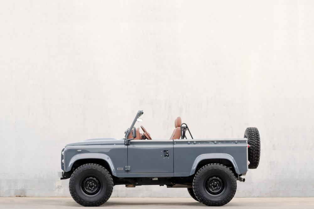 Ricardo's custom grey D90