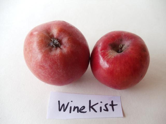 winekist4.jpg