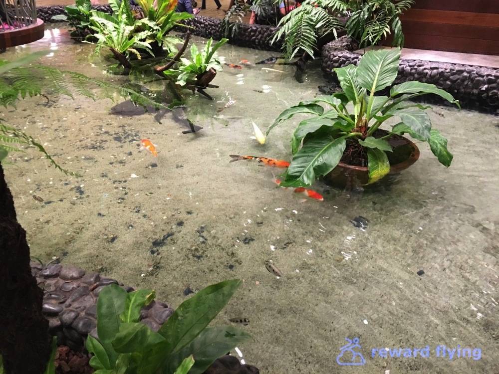 SQ118 Changi 14.jpg