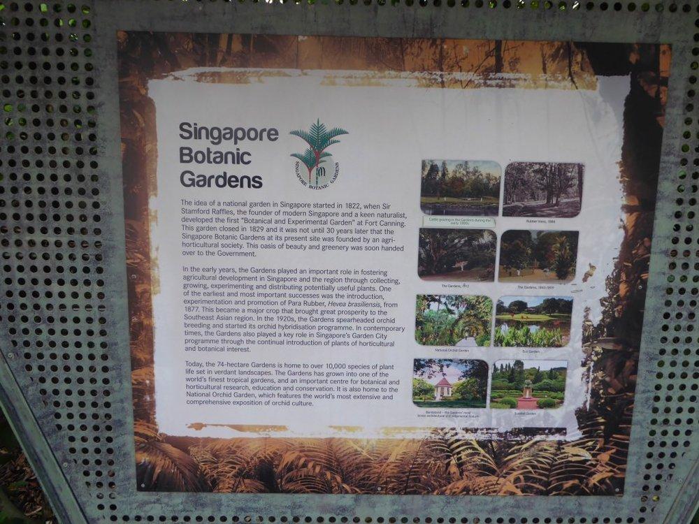 TG404 Singapore City 4.jpg