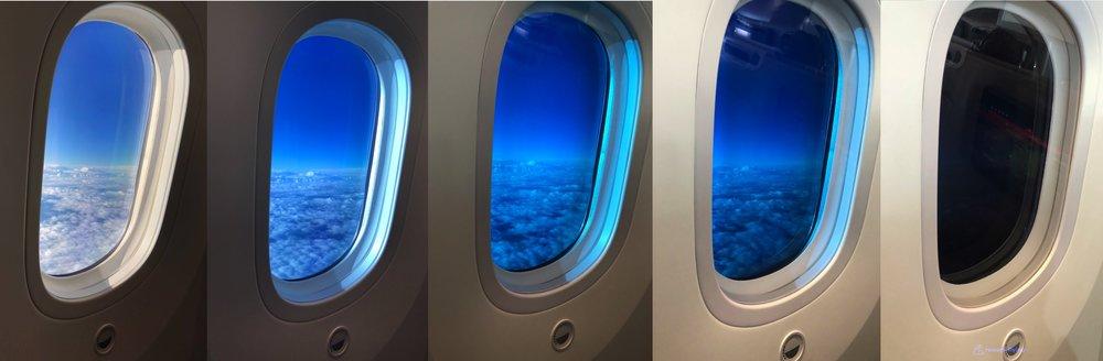 QF906 Window 5 shades.jpg