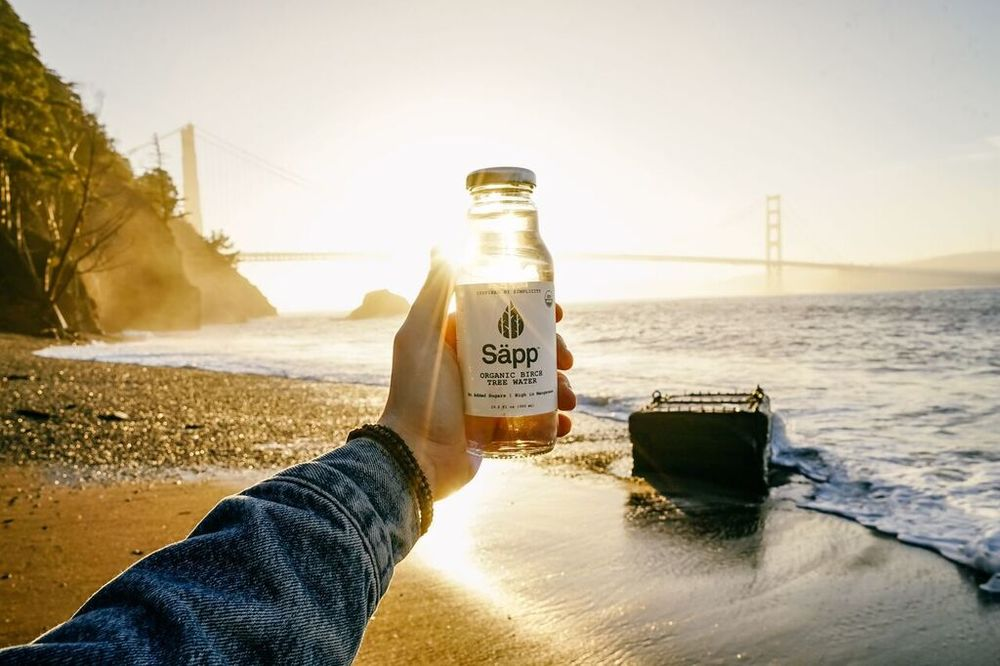 birch water new york sapp detox tips san francisco beach