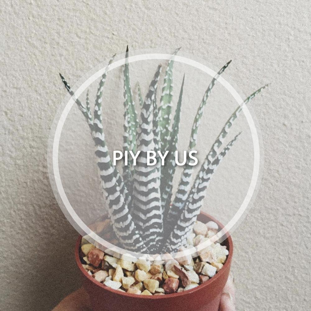 COVER_piybyus.jpg