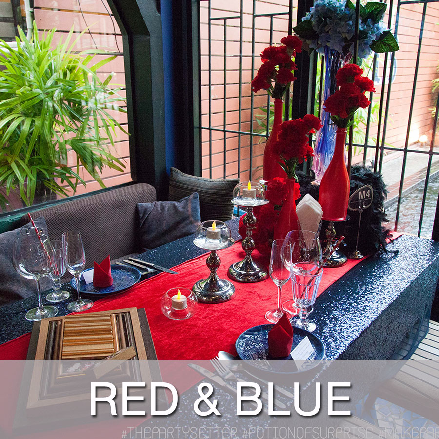 Copy of Copy of Red & Blue Party Theme