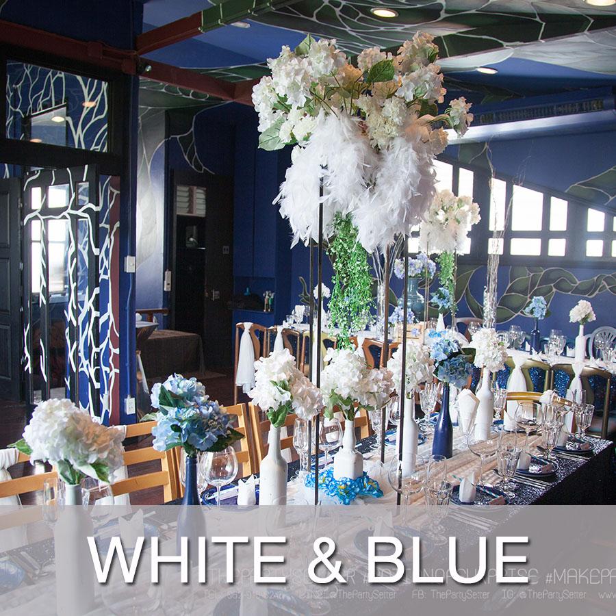 white blue.jpg