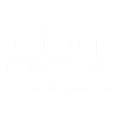 Cut Lawn & Tree Services