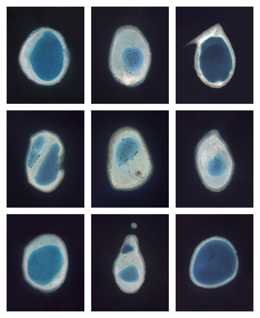 Typologies II (Reefs) , 2015