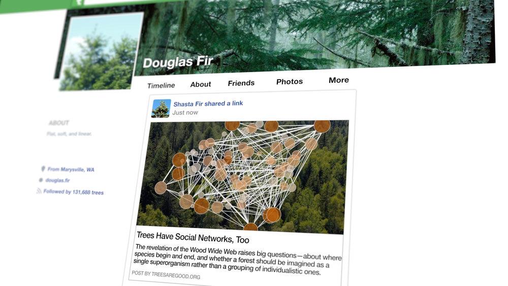 tree-facebook-frame-2.jpg