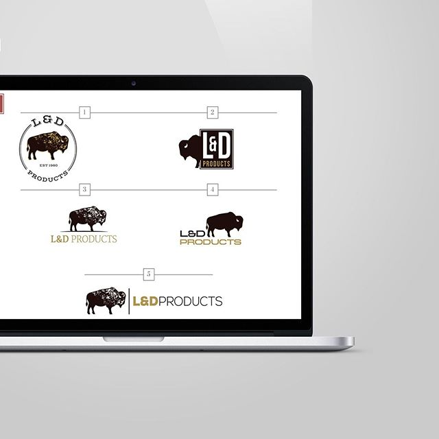 CURRENTLY WORKING ON ... some fun buffalo logos for a local business! ⠀ ⠀ Project background:⠀ Client sells high-end Buffalo statues and Buffalo merchandise. They need a new logo to represent their products for marketing purposes.⠀ ⠀ Target market:⠀ 1. Buffalo, NY speciality stores that sell Buffalo merchandise⠀ 2. Florists/nurseries ⠀ 3. Buffalo, NY Hospitals⠀ ⠀ My favorite are 3 & 5. Which would you pick?
