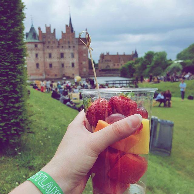 Spiser jordbær og ser frem til Cat Power 🌸 Heartland er fremragende 💖 #heartland17 #heartlandfestival #denmark #igdenmark #naturegram