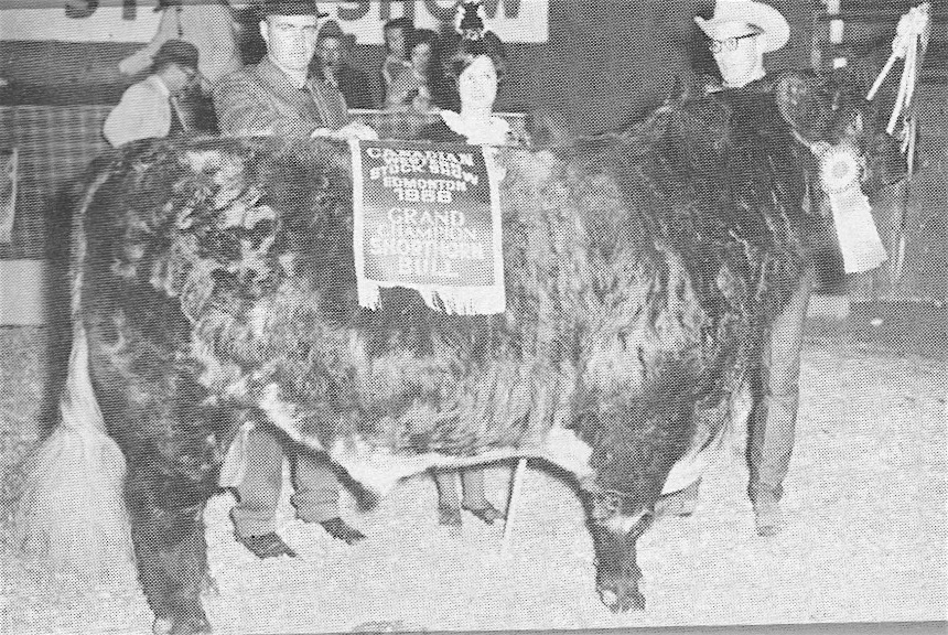 BoaKae Royal Oak 2nd--Grand Champion, top seller and winner of the $1,000Bonanza purse at the 1968 Edmonton Bull Sale.