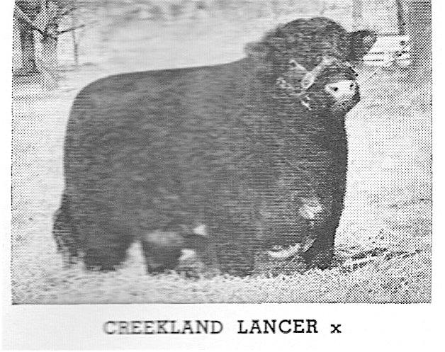 Creekland Lancer
